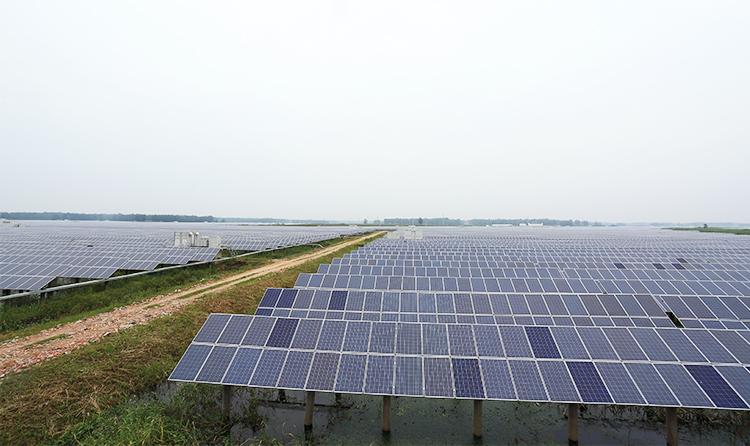 江苏 泗洪 110MW 太阳能光伏电站