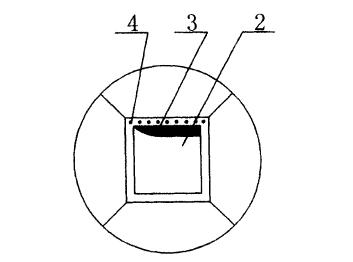 微风风力发电装置中使用的风叶